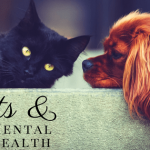 Pets, Mental Health, Health, Care