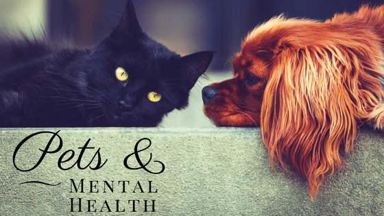 Pets, Mental Health, Health, Care