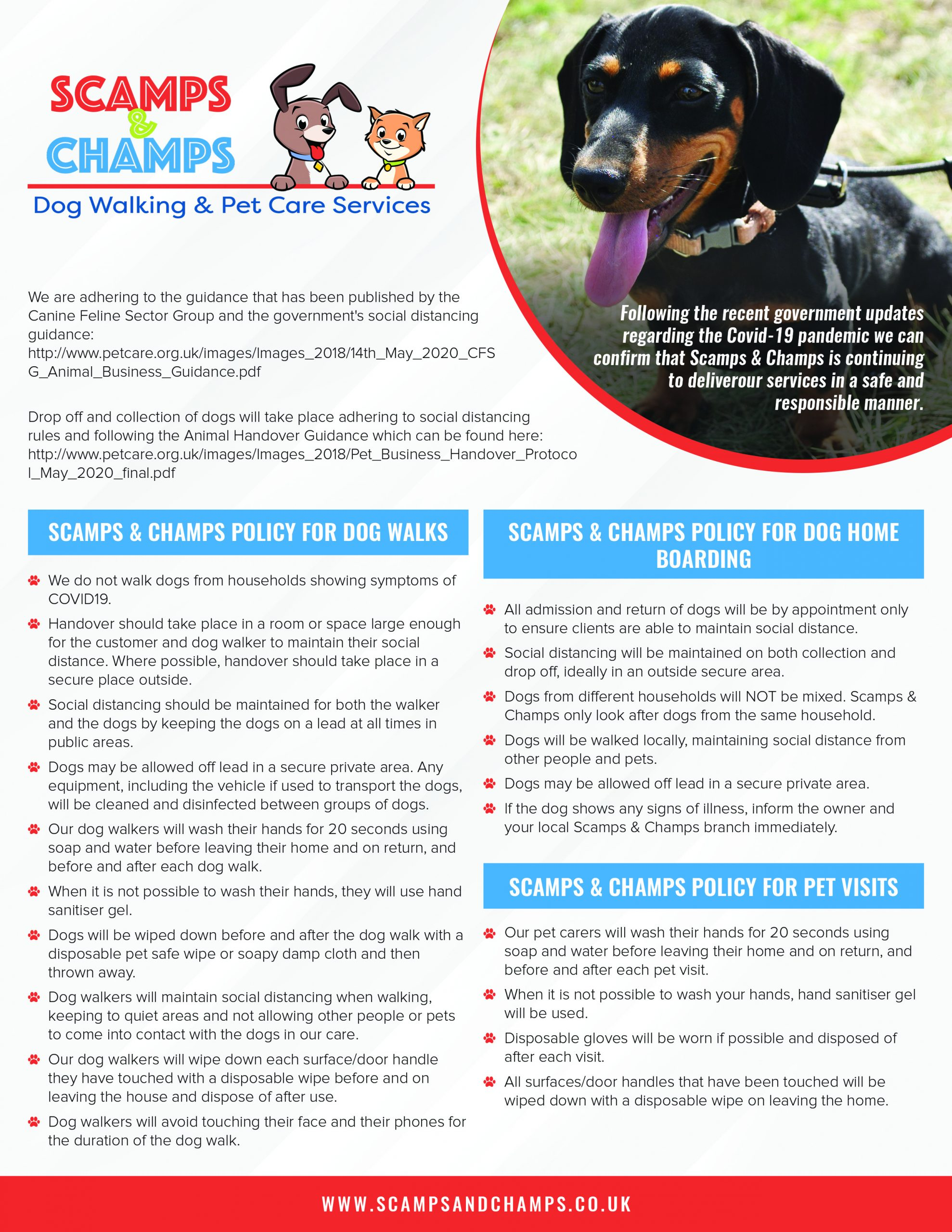 Scamps & Champs Covid Policy