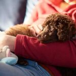 Benefits of Overnight Pet Sitting