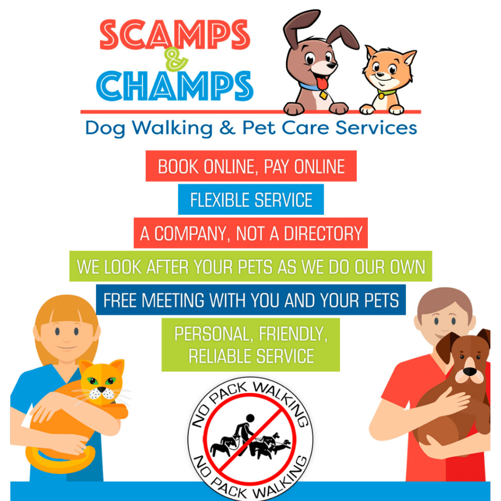 Scamps And Champs Pet Services